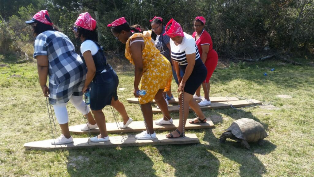Teambuilders of 4 persons, doing a plank walk activity, the left and right foot on an alternative long plank and having to walk a distance together. A tortoise is following behind.
